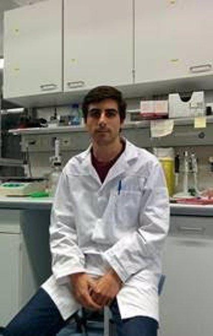 Investigadores españoles demuestran por primera vez el mecanismo de una hormona sexual femenina en la grasa parda