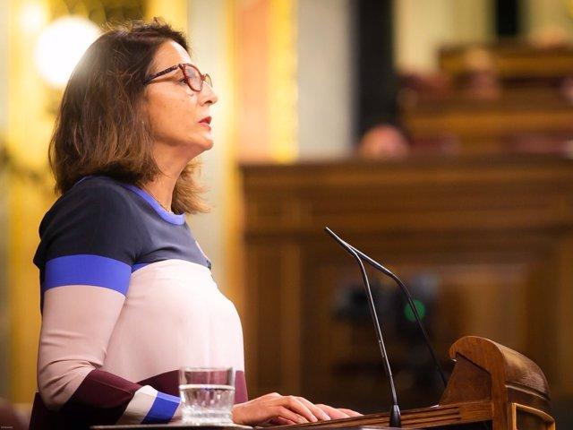 La diputada Isabel Borrego en el Congreso