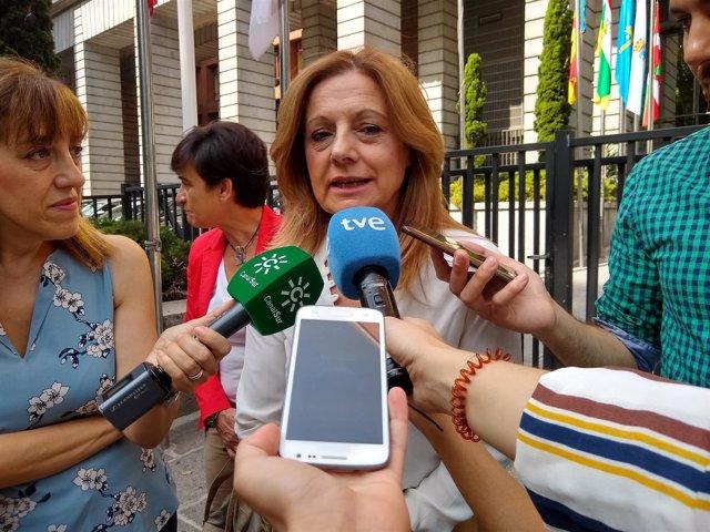 La consejera de Salud, Marina Álvarez, a su llegada al CISNS
