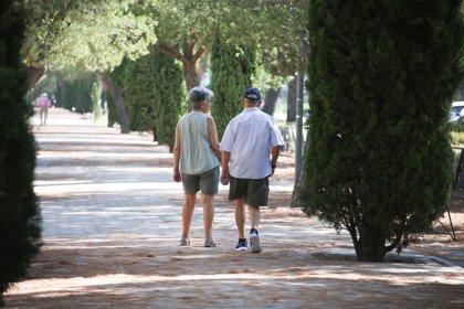 En 2033 el 25,2% de los 49 millones de habitantes que habrá en España tendrá 65 o más años