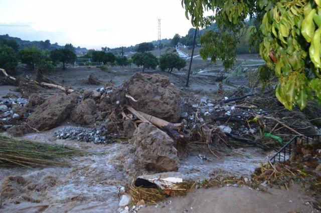 Lluvias, arroyo, ramas, arrastre, precipitaciones, temporal