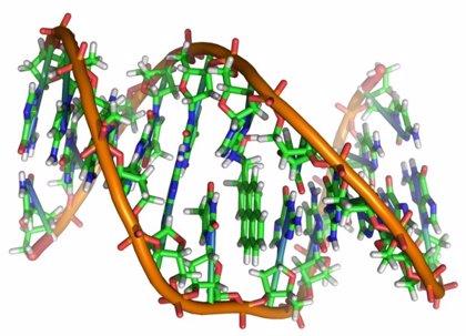 Nuevo método para descifrar el código epigenético del ADN