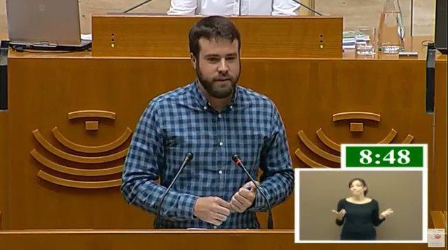 El diputado de Podemos Daniel Hierro en el pleno de la Asamblea