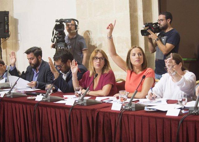 Votación en Pleno de la Diputación de Cádiz