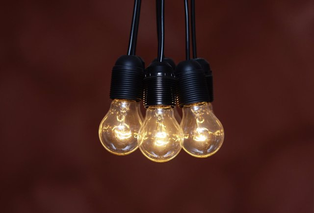 Traditional Incandescent light bulbs are seen at an apartment in Munich August 3