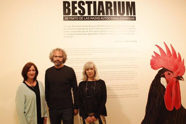 Valladoli.- El Museo de la Ciencia acoge la exposición Bestiarium