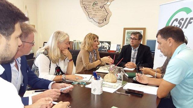 La parlamentaria del PP por Cádiz, Ana Mestre