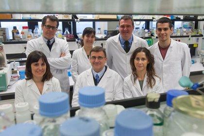 Científicos españoles crean una nueva tecnología de ARN mensajeros para tratar la porfiria aguda intermitente