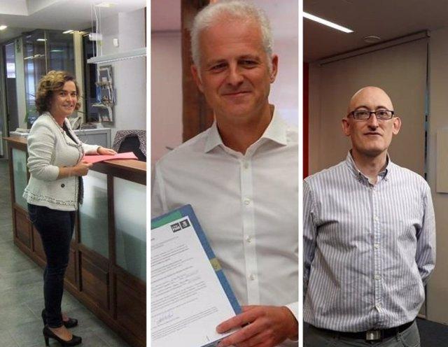 Arraiz, Hermoso de Mendoza y Martínez Reinares, precandidatos PSOE