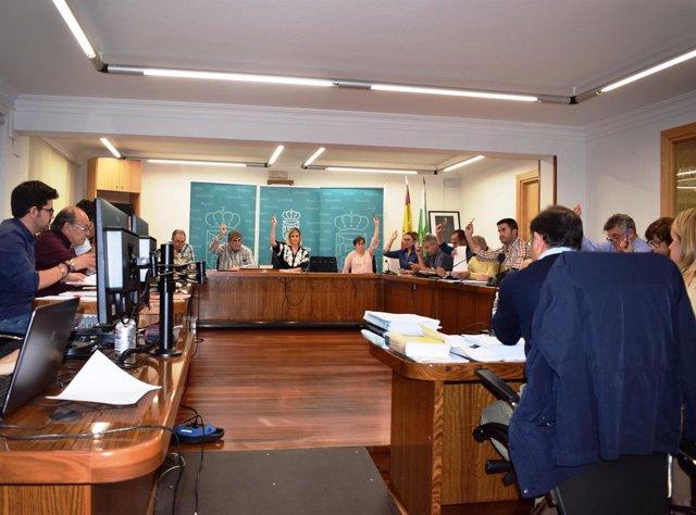 Pleno Ayuntamiento de Piélagos