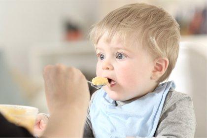 Horarios de comida en bebés, cuáles son los mejores