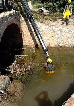 Un equipo de Ibanat en el operativo de rastreo en Sant Llorenç