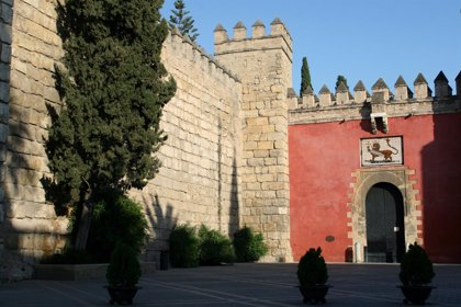 Alcázar de Sevilla contrata análisis especializados con radiografía de árboles para conocer su estado y nivel de riesgo