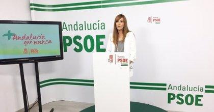 PSOE valora actuaciones de la Junta en montes públicos de Huelva para prevenir incendios y daños naturales