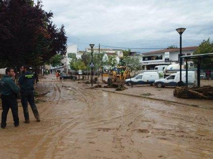 """Ciudadanos exige al Gobierno """"actuaciones de limpieza"""" de los cauces de los ríos para prevenir inundaciones en Granada"""