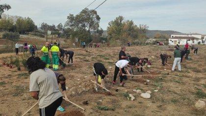 La Diputación de Málaga organiza nuevas plantaciones participativas para mejorar seis parajes de la provincia