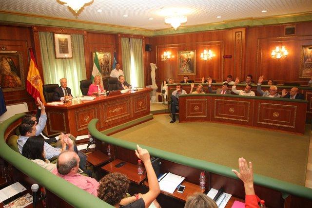 Pleno extraordinario marbella votación ayuntamiento