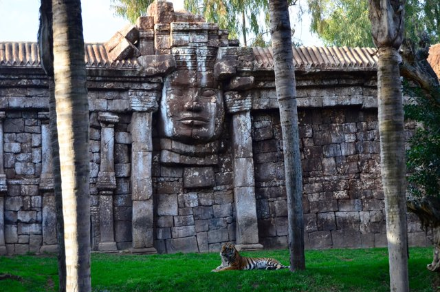 Templo Angkor de Bioparc Fuengirola