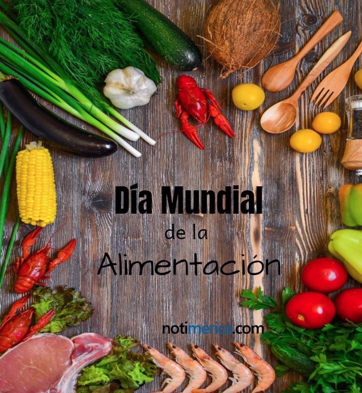 16 De Octubre Dia Mundial De La Alimentacion Por Que Se Celebra En Esta Fecha