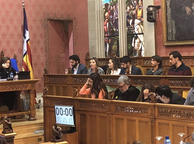 Momento del pleno del Consell de Mallorca