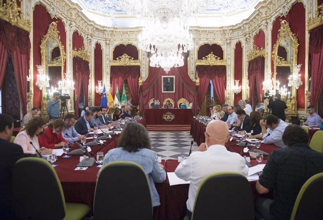 Pleno de mayo de Diputación