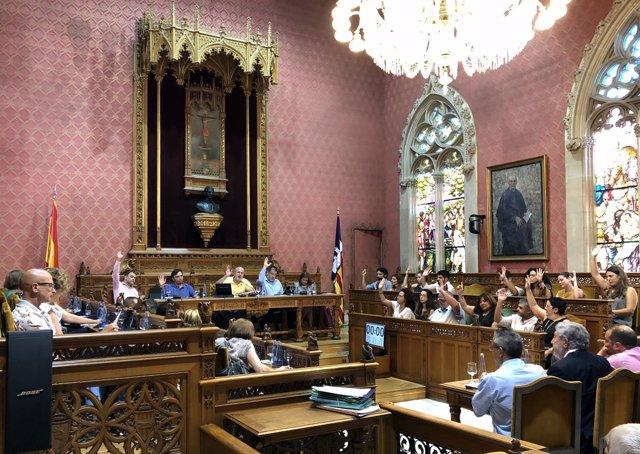 Pleno extraordinario Consell de Mallorca
