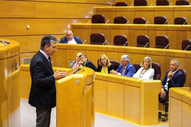 Ignacio Cosidó interviene en la Diputación Permanente del Senado