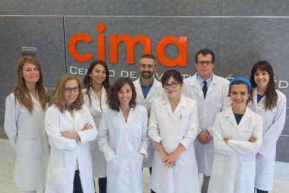 Investigadores españoles desarrollan una estrategia que frena el crecimiento del tumor hepático más común