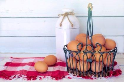 Comer frutos secos y huevos mejora la función pulmonar y la carne procesada, la empeora
