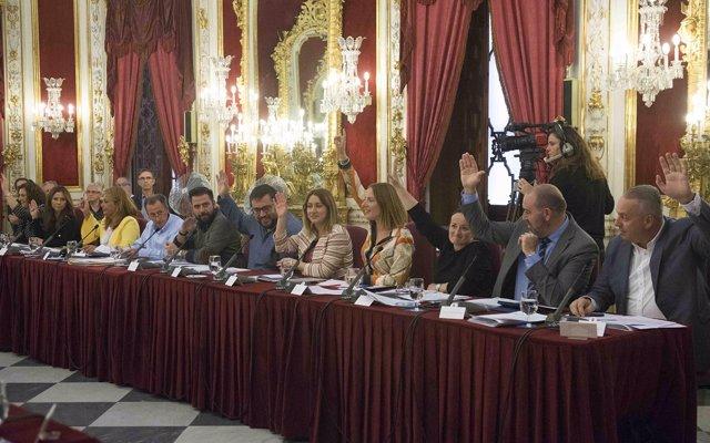 Demandas de mejoras en transportes y conexiones protagonizan los acuerdos del Pleno de octubre de la Diputación de Cádiz