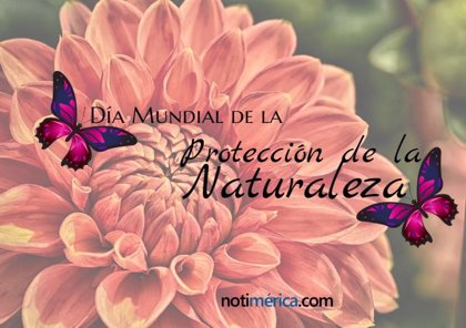 18 de octubre: Día Mundial de la Protección de la Naturaleza, ¿por qué se celebra hoy?