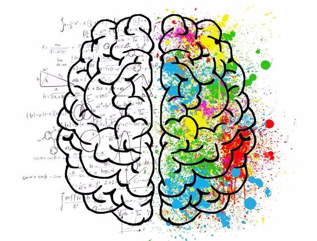 Científicos identifican por primera vez los genes que determinan la personalidad