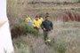 Níjar (Almería) reconoce a entidades y colectivos que participaron en la búsqueda del niño Gabriel Cruz