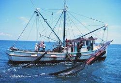 Agricultura i el sector pesquer acorden un pla sobre la pesca d'arrossegament a Catalunya (NOAA - Archivo)