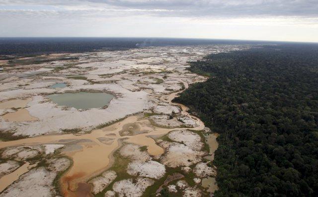 Área deforestada en el Amazonas