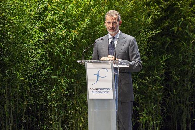 El Rey Felipe VI interviene en la entrega de la VIII Edición del Premio Novia Sa