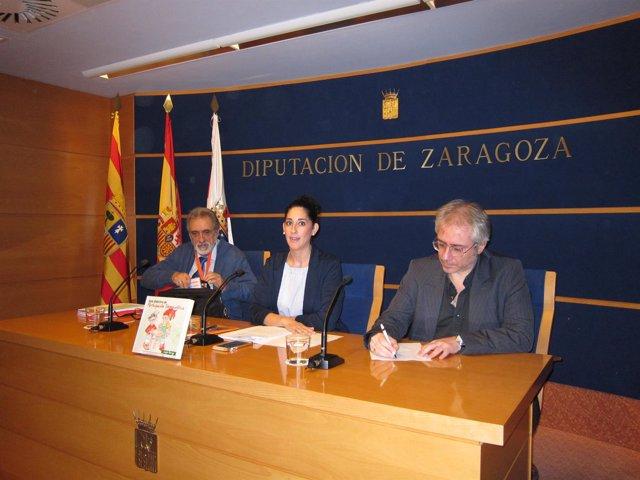 El Congreso de Jaraba se ha presentado este martes en la DPZ