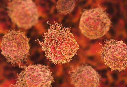 Hallan una nueva molécula que bloquea la acción de los genes que impulsan el crecimiento del cáncer de próstata