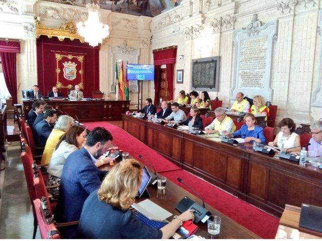 Pleno Ayuntamiento de Málaga junio