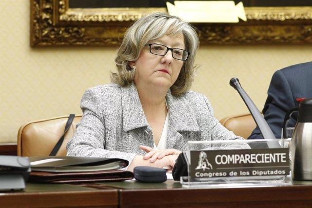 La Comisión de Política Territorial y Función Publica del Congreso examina a Flo