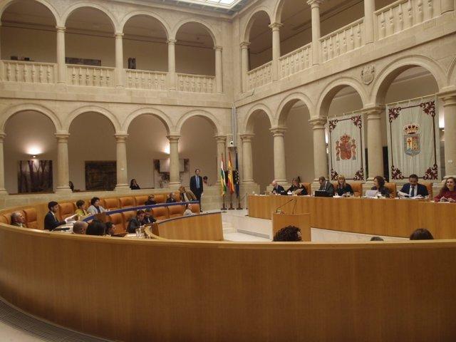 Sesión ordinaria Palamento de La Rioja