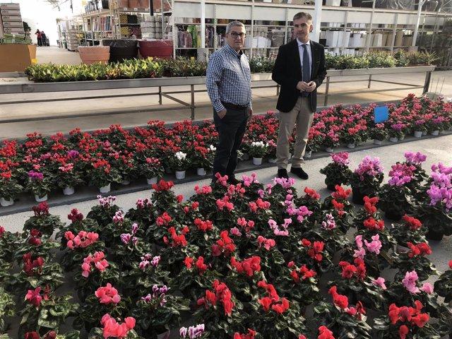 Del Amor durante la visita un invernaderos de flores cortadas y plantas ¡