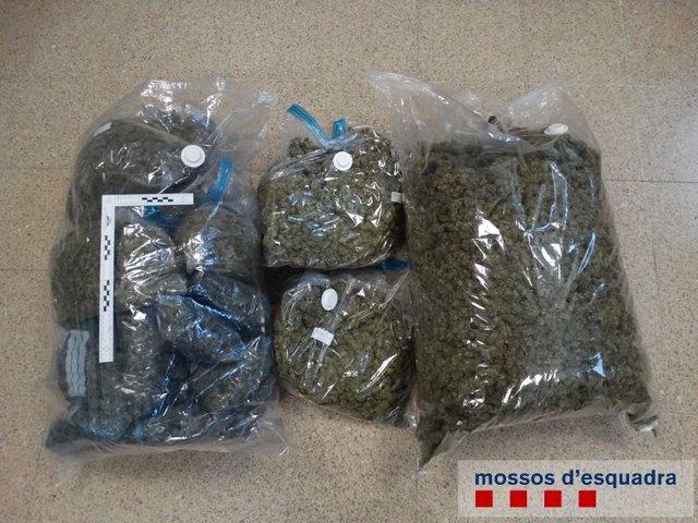 Bolsas con marihuana intervenidas por los Mossos en Figueres (Girona)