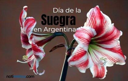 26 de octubre: Día de la Suegra en Argentina, ¿por qué se celebra en esta fecha?