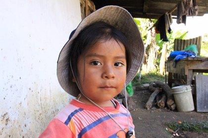 La mitad de los menores de 3 años en Perú sufren anemia