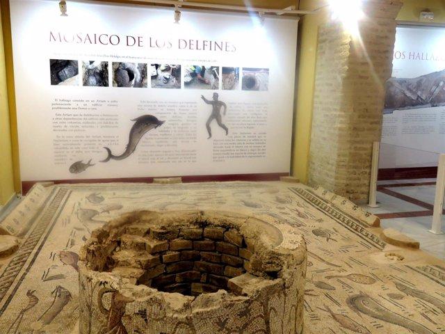 Mosaico romano de la Casa de los Delfines