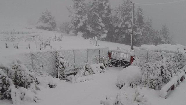 Imagen de la nevada en Cangas.