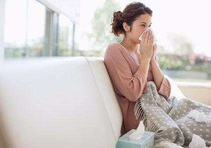 Alergias otoñales: ácaros y hongos