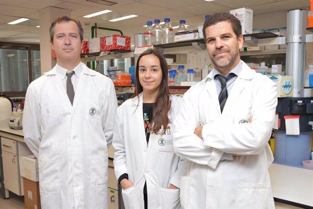 Investigadores de la UCV que han realizado el estudio