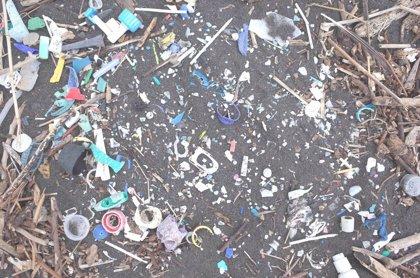 Multinacionales como Cocacola, Unilever o Nestlé se comprometen a reducir el plástico y Greenpeace duda de su sinceridad